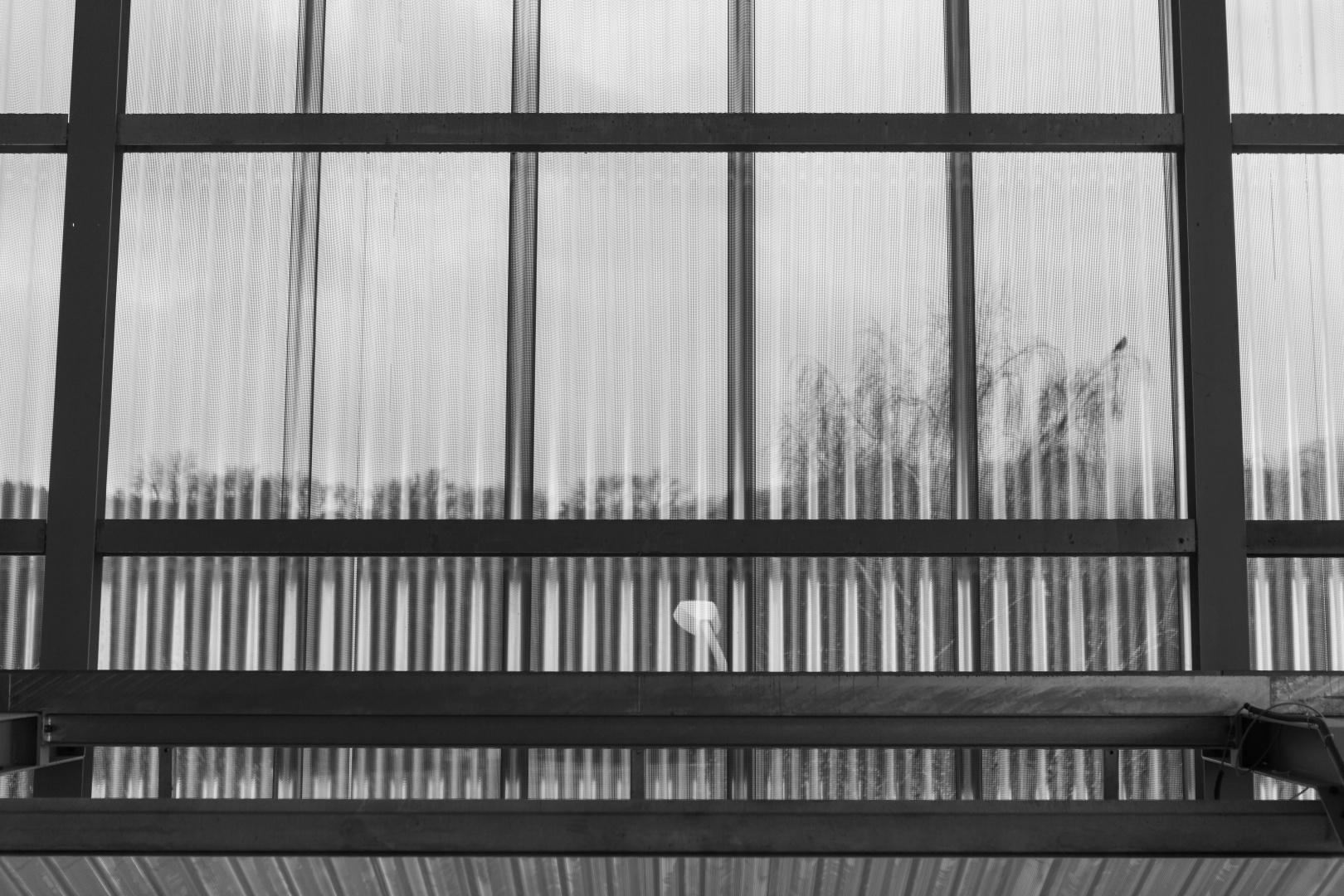 Raumhaltiges Vordach mit Lochblechverkleidung © Giorgia Müller, vfg photographer