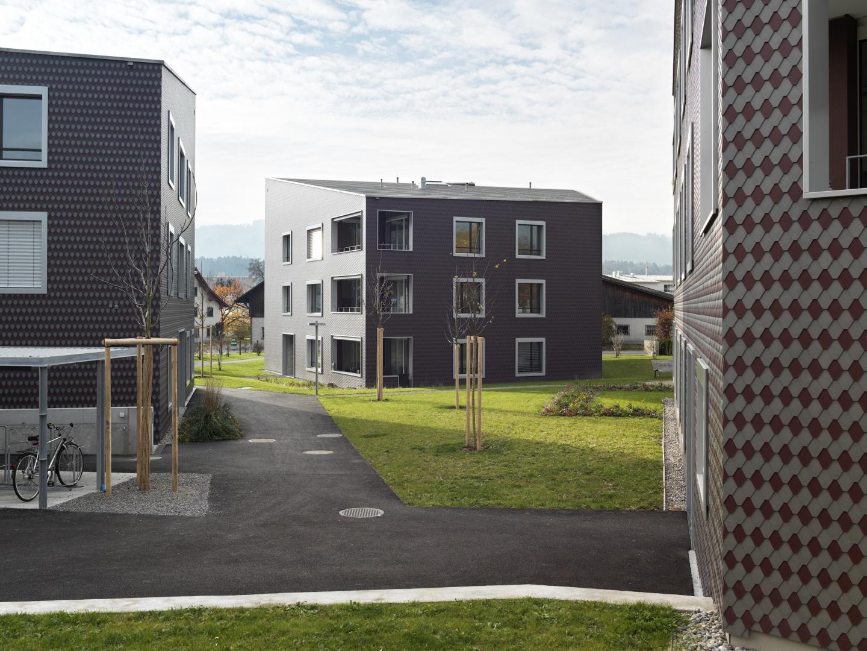 © Andrea Helbling, Arazebra, Zürich