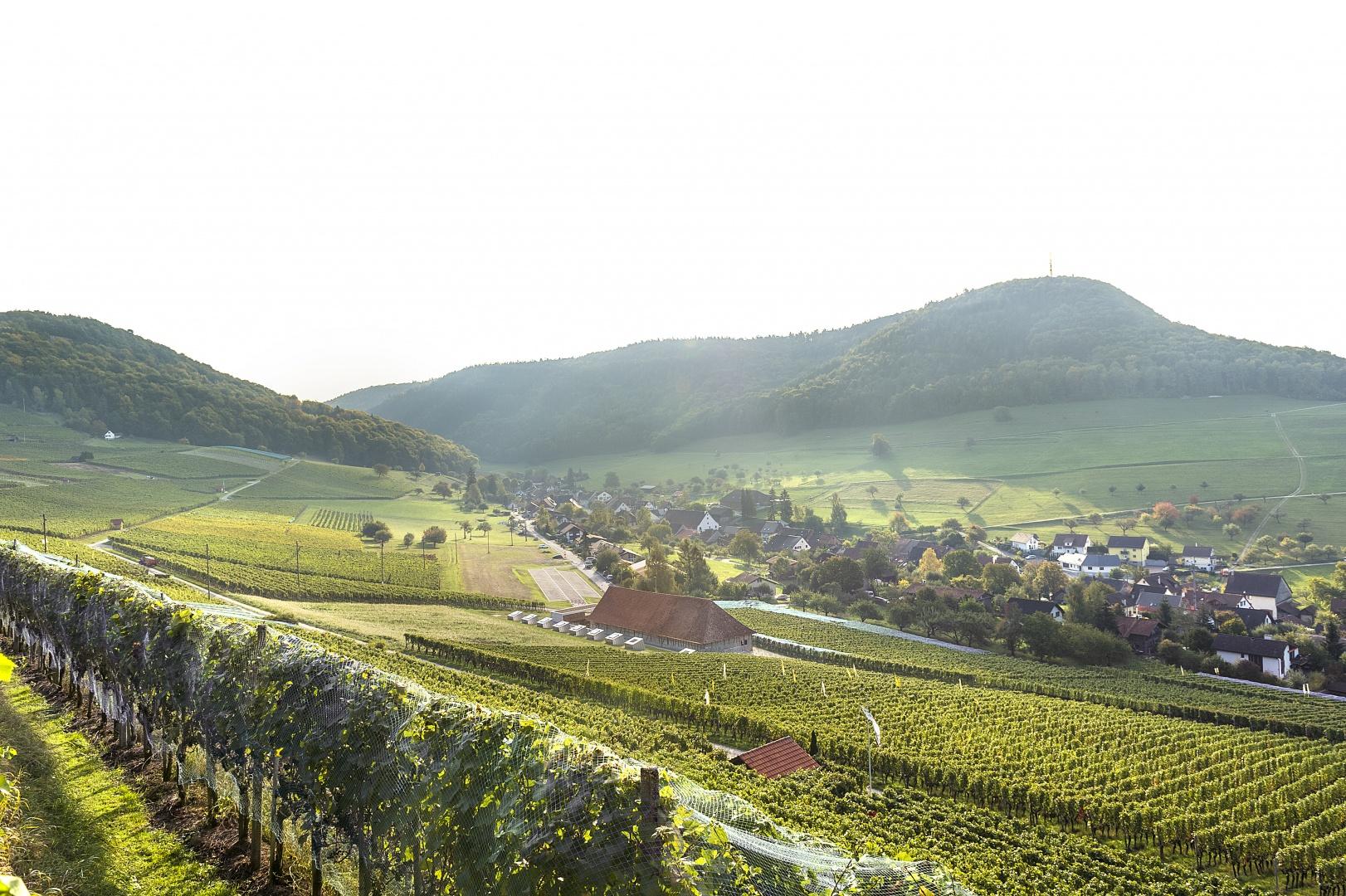 Ansicht Nordwest  © Peter Hebeisen, Zürich