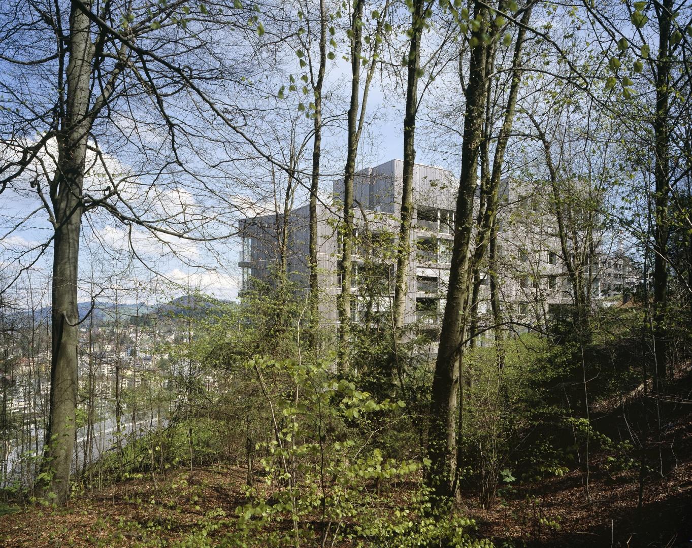 Blick vom Wald © Reinhard Zimmermann, Baar