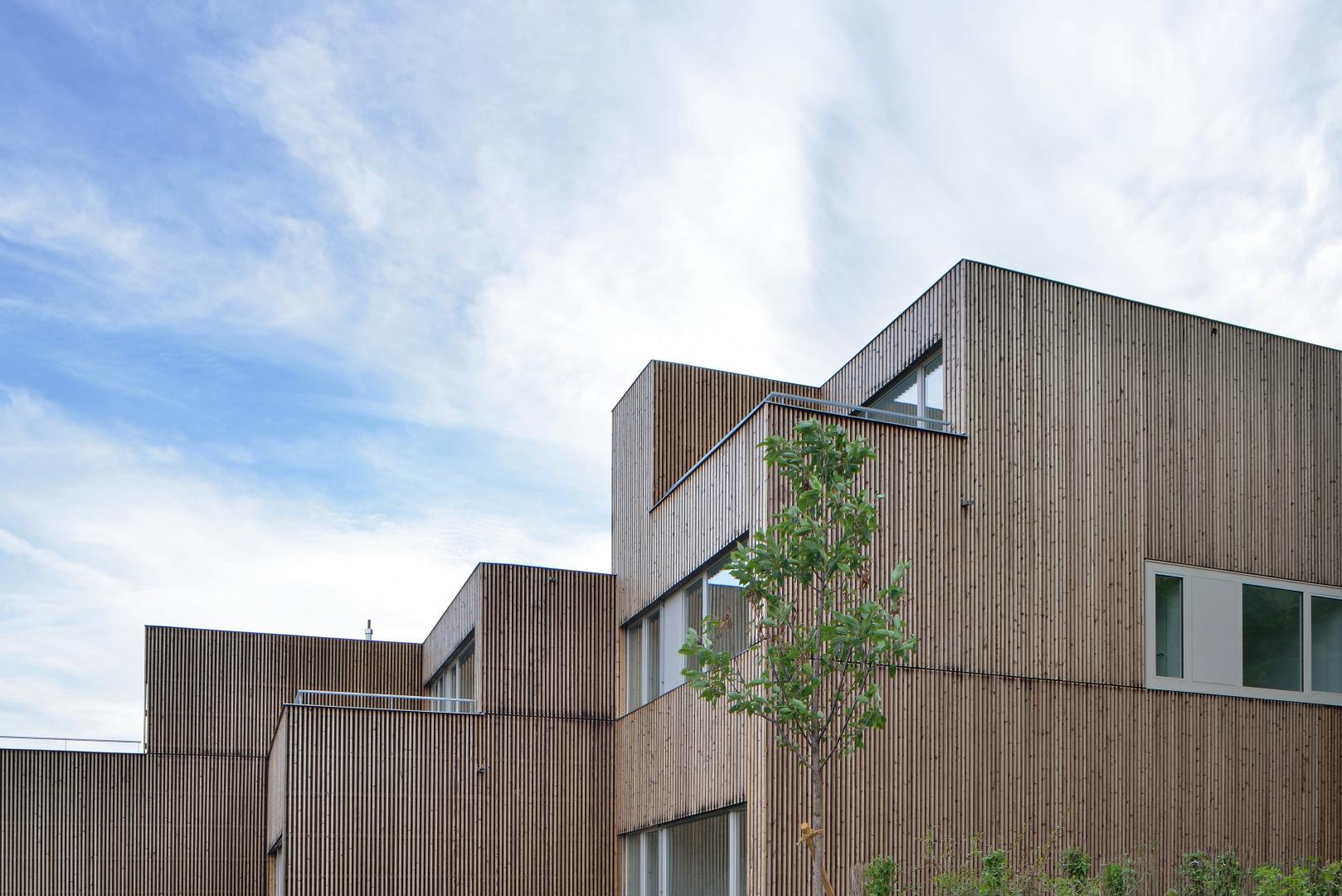 Holzschutz: verkohlt und gebürstet  © Sabrina Scheja, Berneckerstrasse 215, CH-9435 Heerbrugg