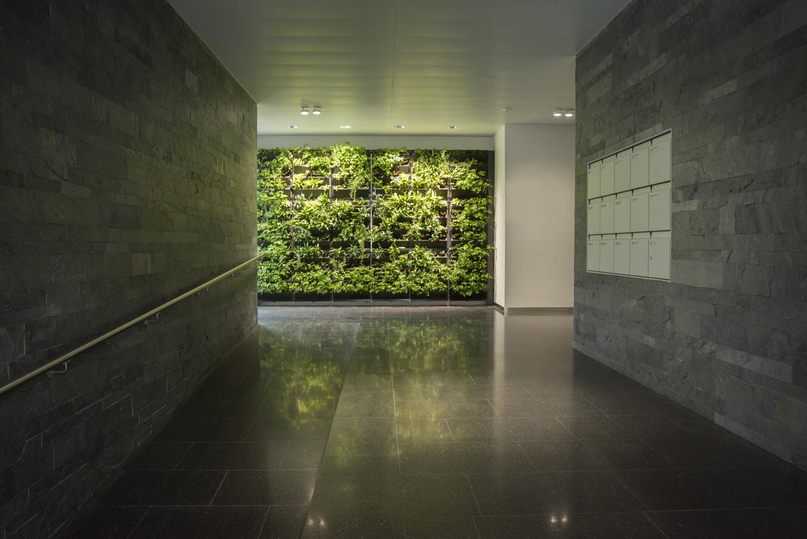 Mur végétalisé entrée Grancy 39 © Philippe Pache Photographe