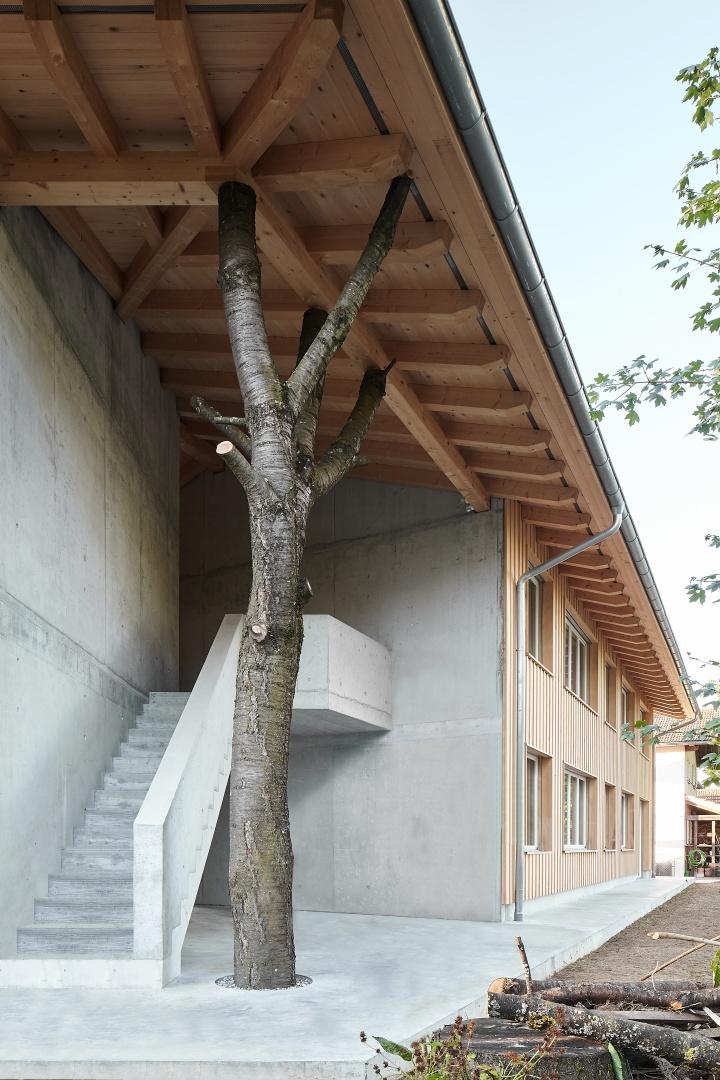 Kirschbaum © Mark Drotsky Architekturfotografie