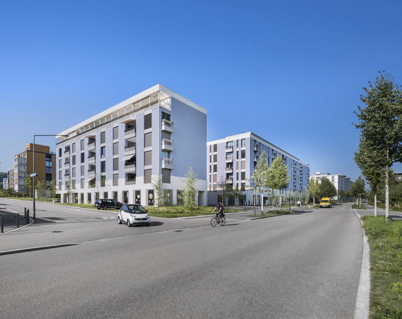 Gesamtansicht Mühlackerstrasse © KMP Architektur AG, Wettingen