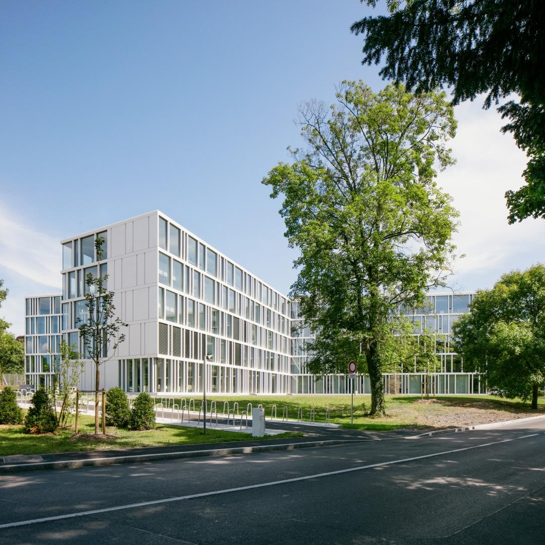 L'école de commerce Raymond Uldry de Genève. © yves-andre.ch