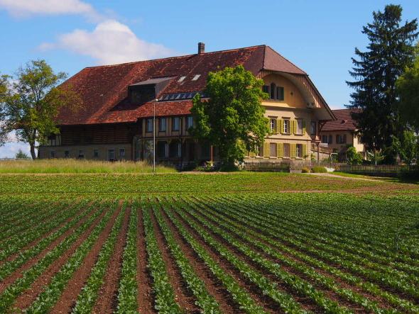 Südwestansicht Grossacherhof © BST