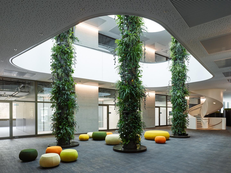 Grünraum - Zitrusgarten im 1. Obergeschoss © Georg Aerni