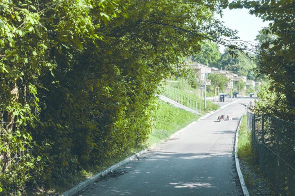 Ansicht von Landenbergstrasse © C. Luperto