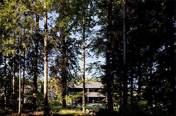 Blick durch Wald auf Westfassade © Leonardo