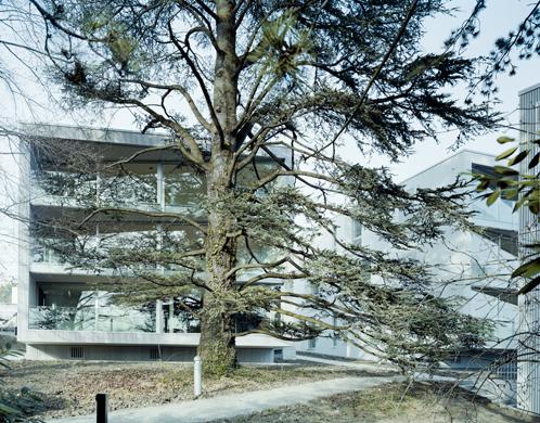 Park mit altem Baumbestand © Dominique Marc Wehrli, La Chaux-de-Fonds