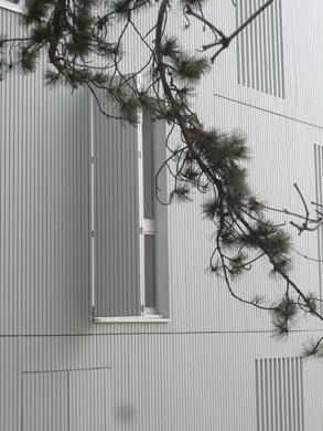 Fassadendetail © Dominique Marc Wehrli, La Chaux-de-Fonds