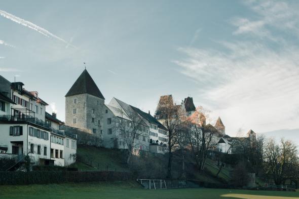 Ensemble mit Schlosshügel © Dominique Marc Wehrli