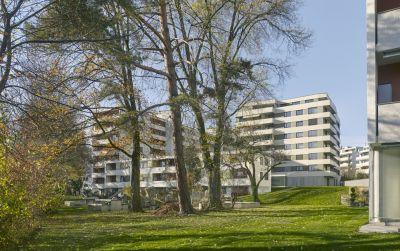 Verdichtung Wohnsiedlung Frankental Zürich-Höngg