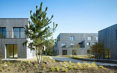 Wohnüberbauung im Rebgarten