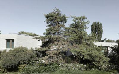 Maison à Cologny