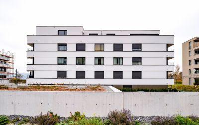 Wohnbauten Plattenhof in Horgen