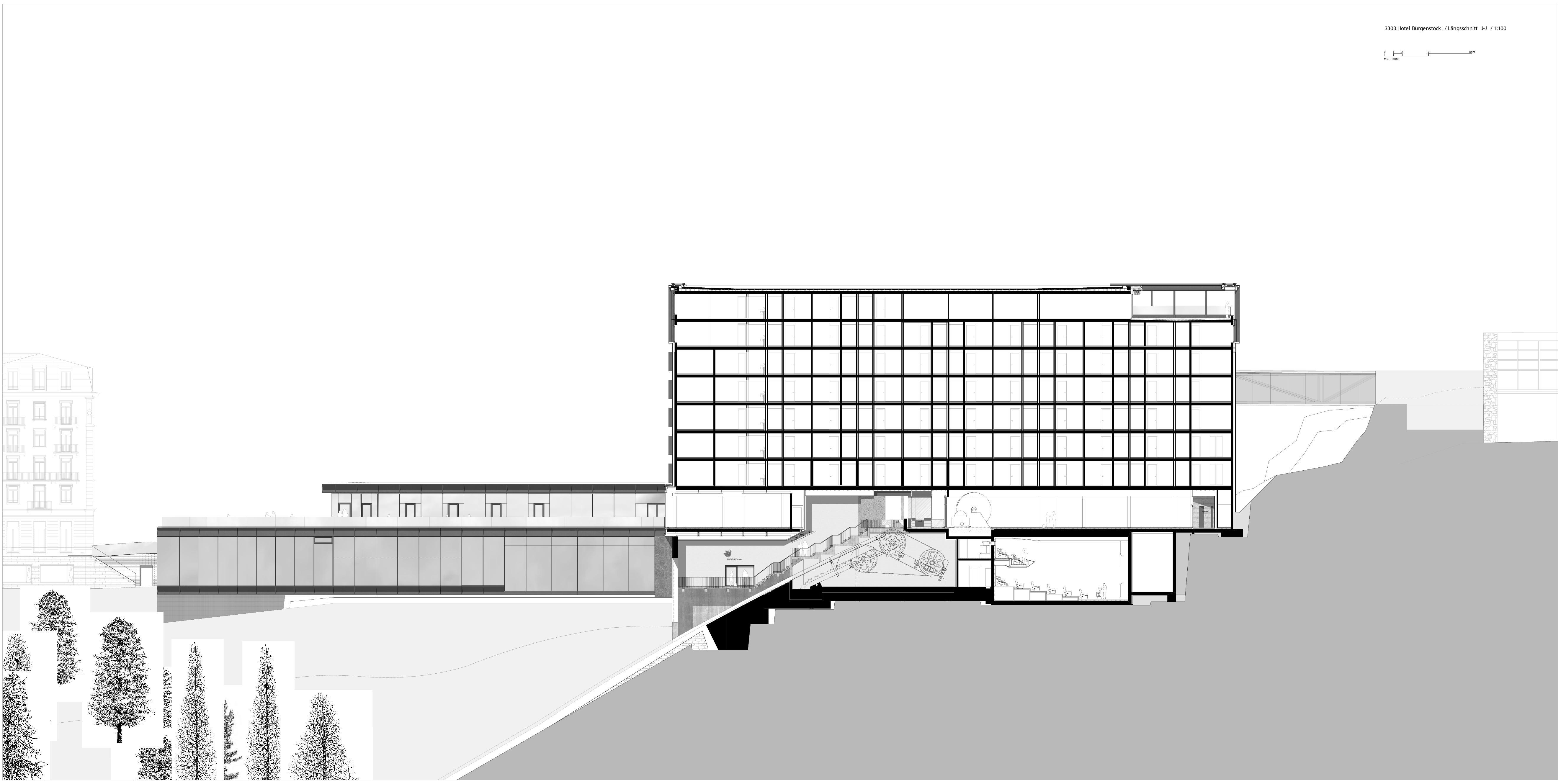 Coupe longitudinale J BÜRGENSTOCK HOTEL 5*SUPERIOR  de Dipl. Arch. ETH SIA<br/>
