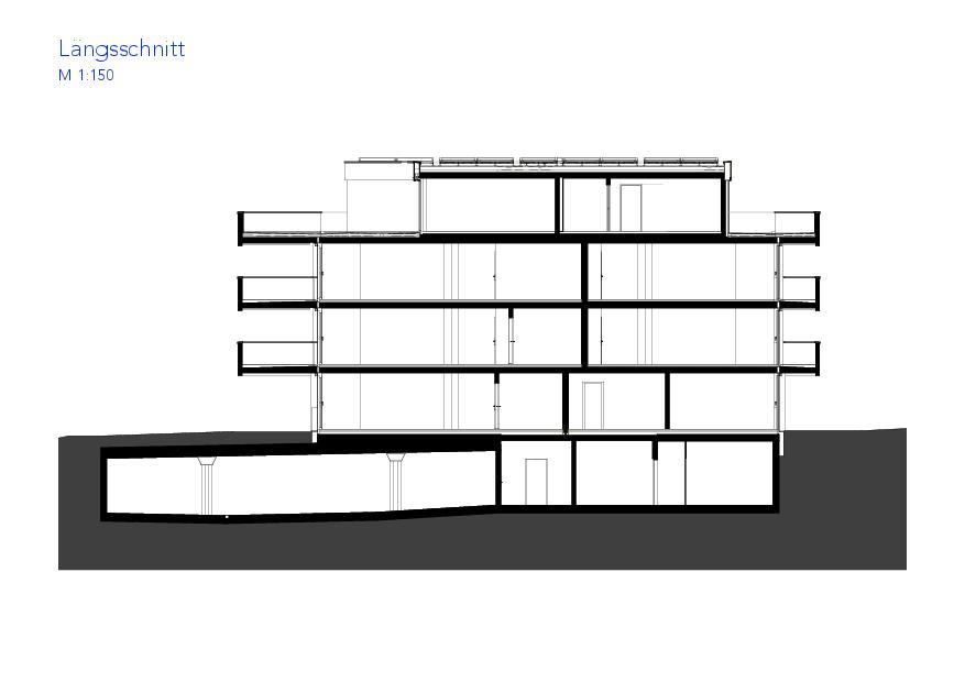 Coupe longitudinale Haus VIVO de Wyss Architektur + Bauleitung GmbH